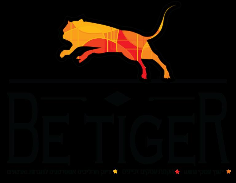 לוגו שלום גינזבורג